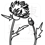 006azami_a