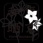 027kikyo_a